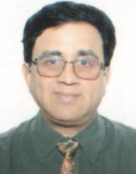 Mr N Sridharan, FEDDERS LLOYD CORPORATION LTD, CEO & Director Marketing