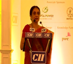 Ms Neerja Mathur, Chairperson, CEA at the Inaugural session of the Energy Conclave 2014