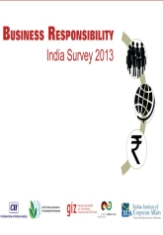 Business Responsibility India Survey 2013