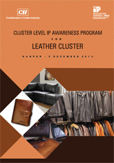 Report on Cluster Level IP Awareness Program for Leather Cluster