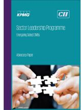 Sector Leadership Programme: Energizing Select SMBs