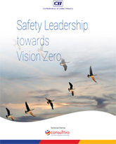 Safety Leadership Towards Vision Zero