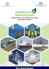 Conference on Natural Gas - Proceedings Summary
