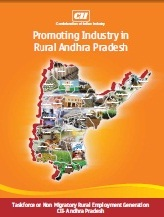 Promoting Industry in Rural Andhra Pradesh